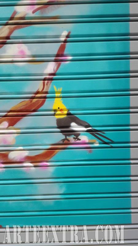 Persiana graffiti Centre Estètica Sant Gervasi 2017