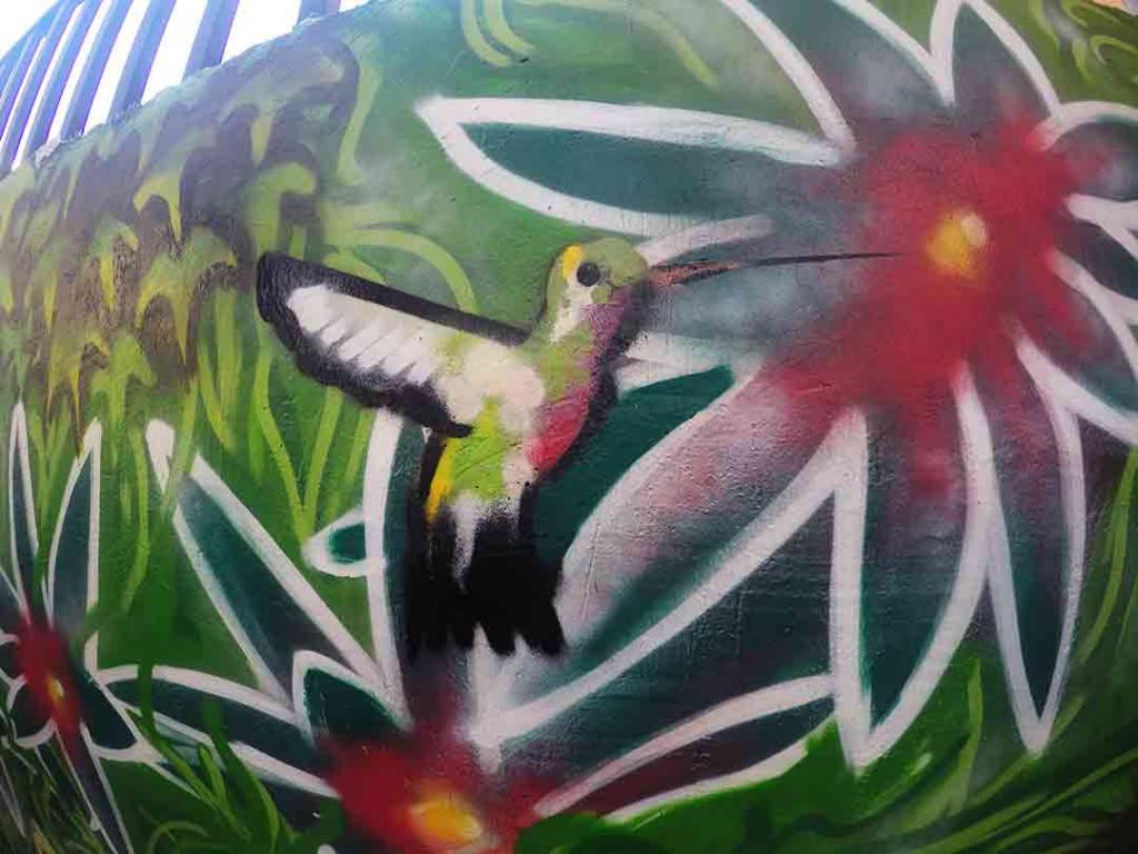 Detalle de colibri hecho a spray .
