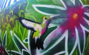 Decoración mural interior y exterior en pintura o graffiti en Barcelona